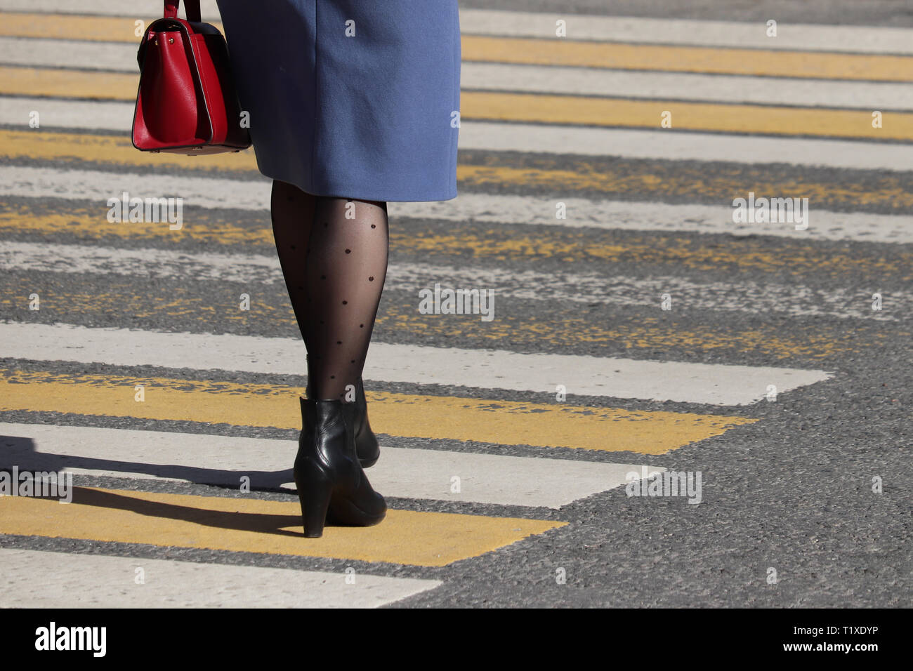 Woman walking on pedestrian crossing, rear view. Female legs in fashionable stockings and black shoes on high heels on the crosswalk, street safety - Stock Image