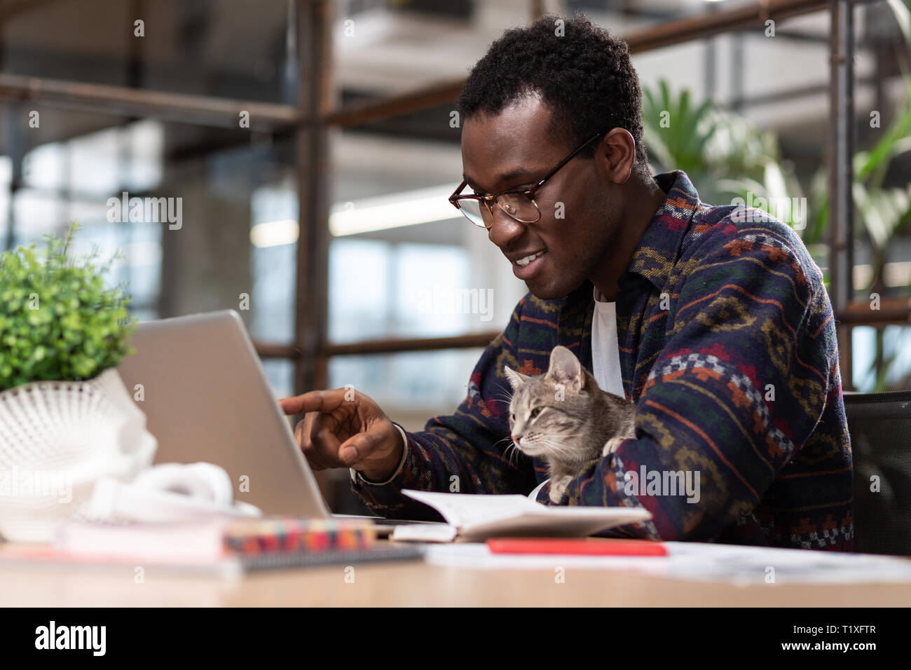 Man working together with his grey cat Stock Photo