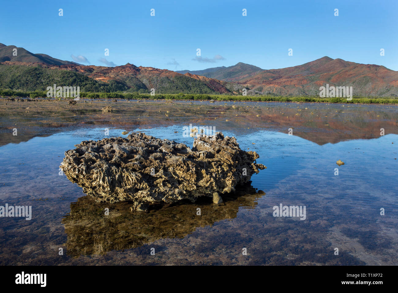 Volcanic boulder on a wave-cut platform on the Forgotten Coast, Southern Lagoon Unesco World Heritage Site, New Caledonia. - Stock Image