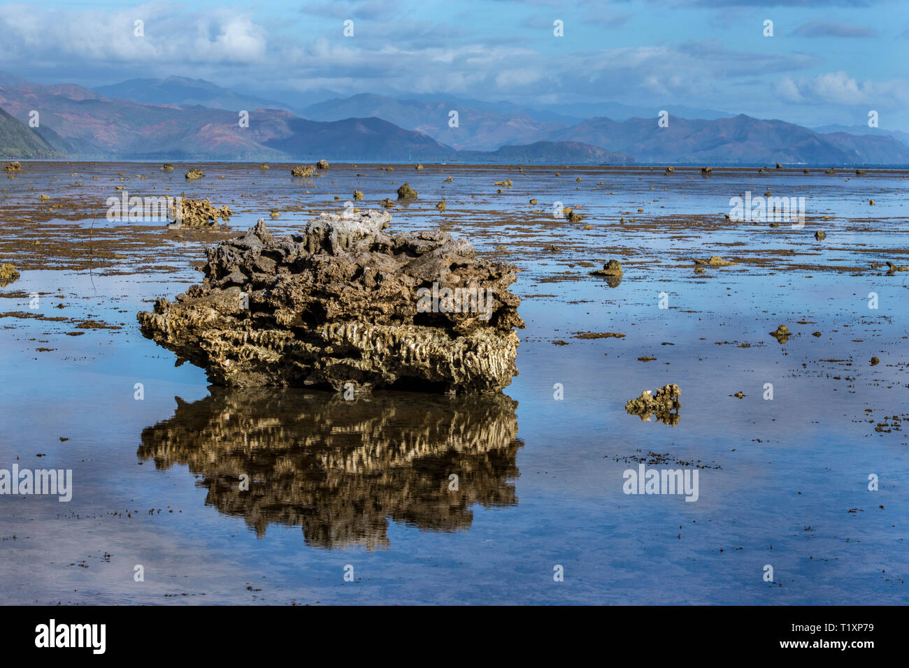 Volcanic boulders on a wave-cut platform on the Forgotten Coast, Southern Lagoon Unesco World Heritage Site, New Caledonia. - Stock Image