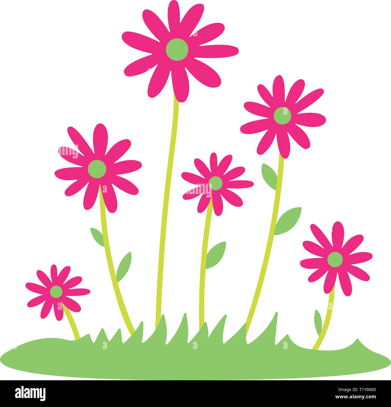 Colorful Spring Daisy Flowers Vector Illustration Grass And Wild Flowers Isolated Background Spring Grass Border With Early Spring Flowers And Stock Vector Image Art Alamy