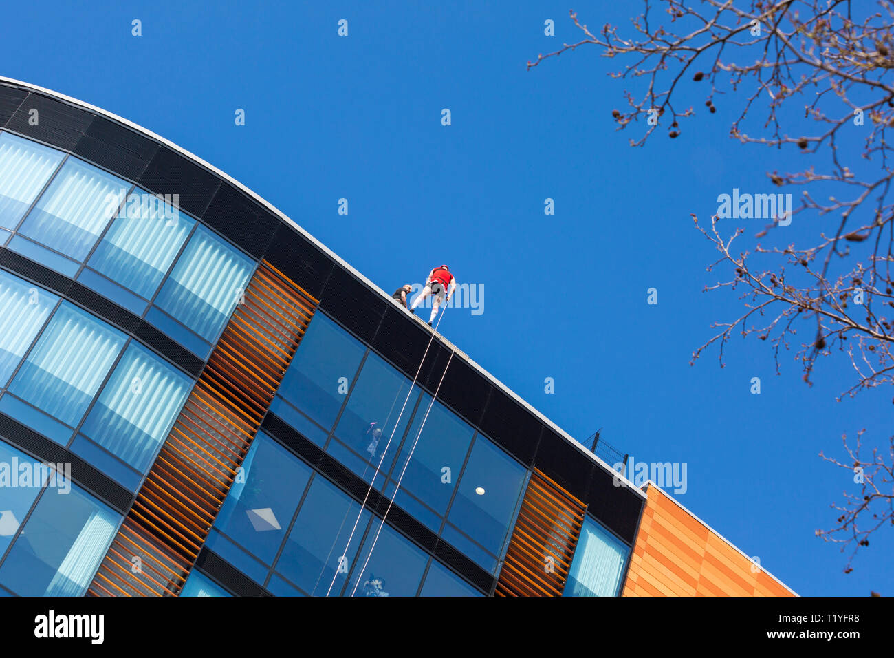 Bournemouth, Dorset, UK. 29th Mar, 2019. Staff working for telecommunications provider 4Com abseil down their new office building at One Lansdowne Plaza in Bournemouth which is 100ft high. They are raising funds for Hope Housing and Hope AOK Rucksack Appeal who provide support to homeless in Bournemouth. A lovely warm sunny day for the descent!  Man getting ready to abseil down while friends and colleagues look out. Credit: Carolyn Jenkins/Alamy Live News - Stock Image