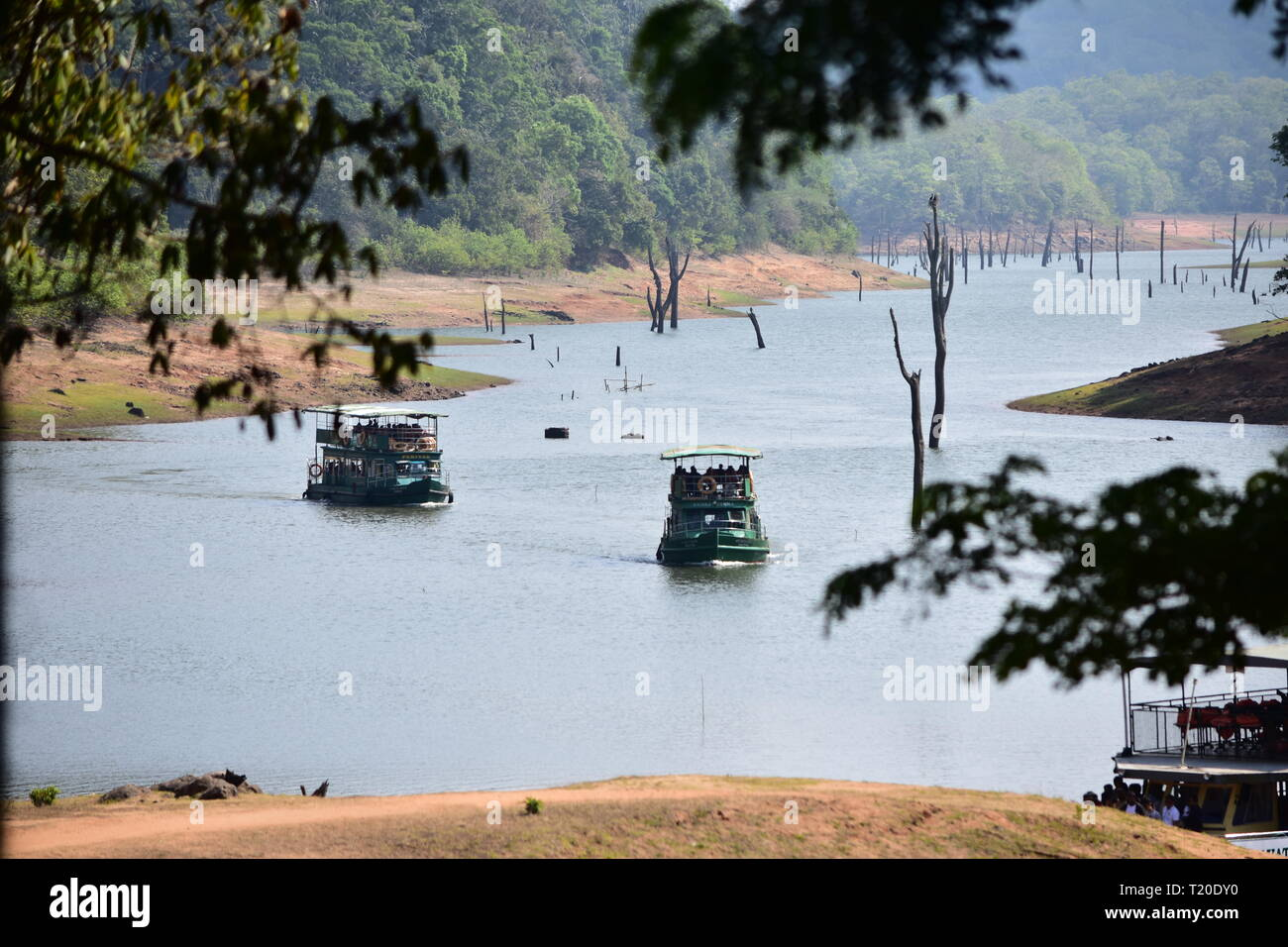 Periyar wildlife sanctuary thekkady - Stock Image