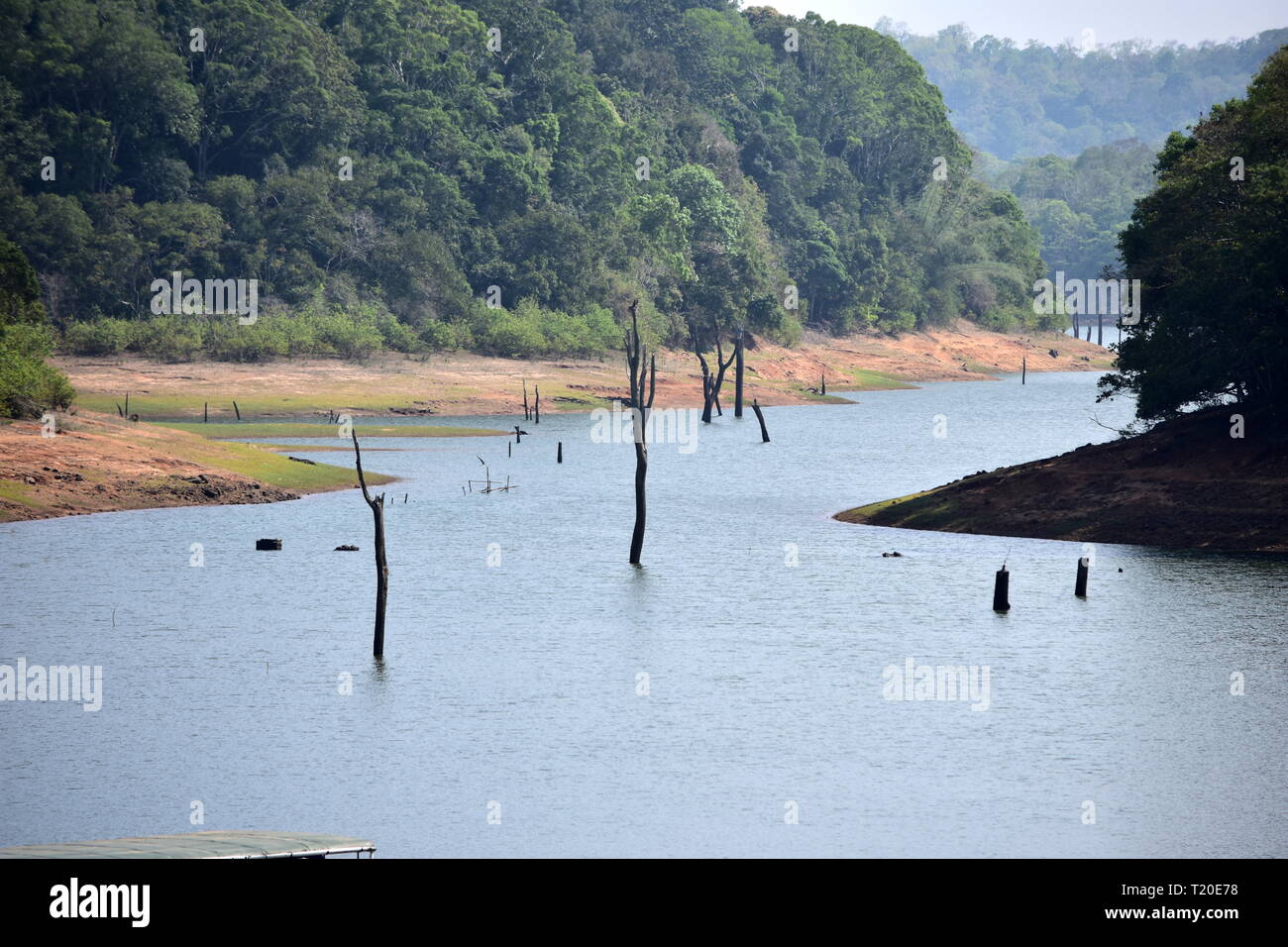 Thekkady Lake Boating view at Periyar National Park - Stock Image