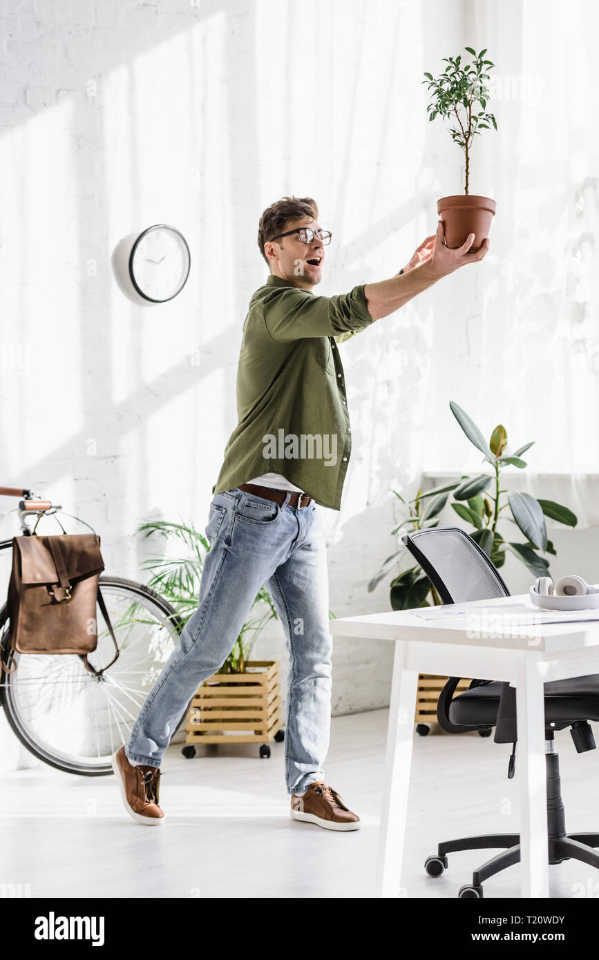 tricky man in green shirt and jeans holding pot with plant in office - Stock Image