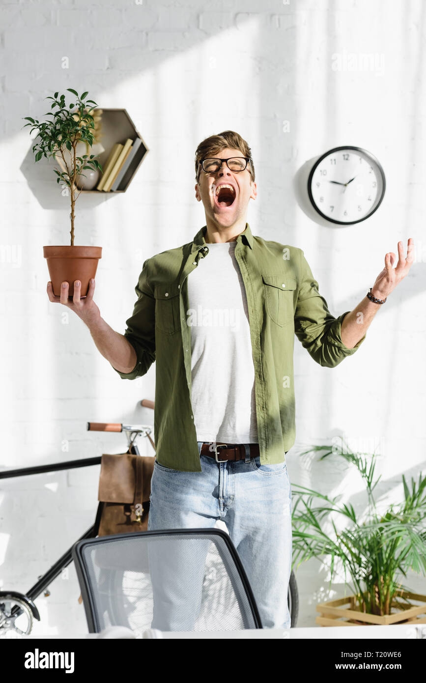 cunning handsome man in green shirt and jeans holding pot with plant in office - Stock Image