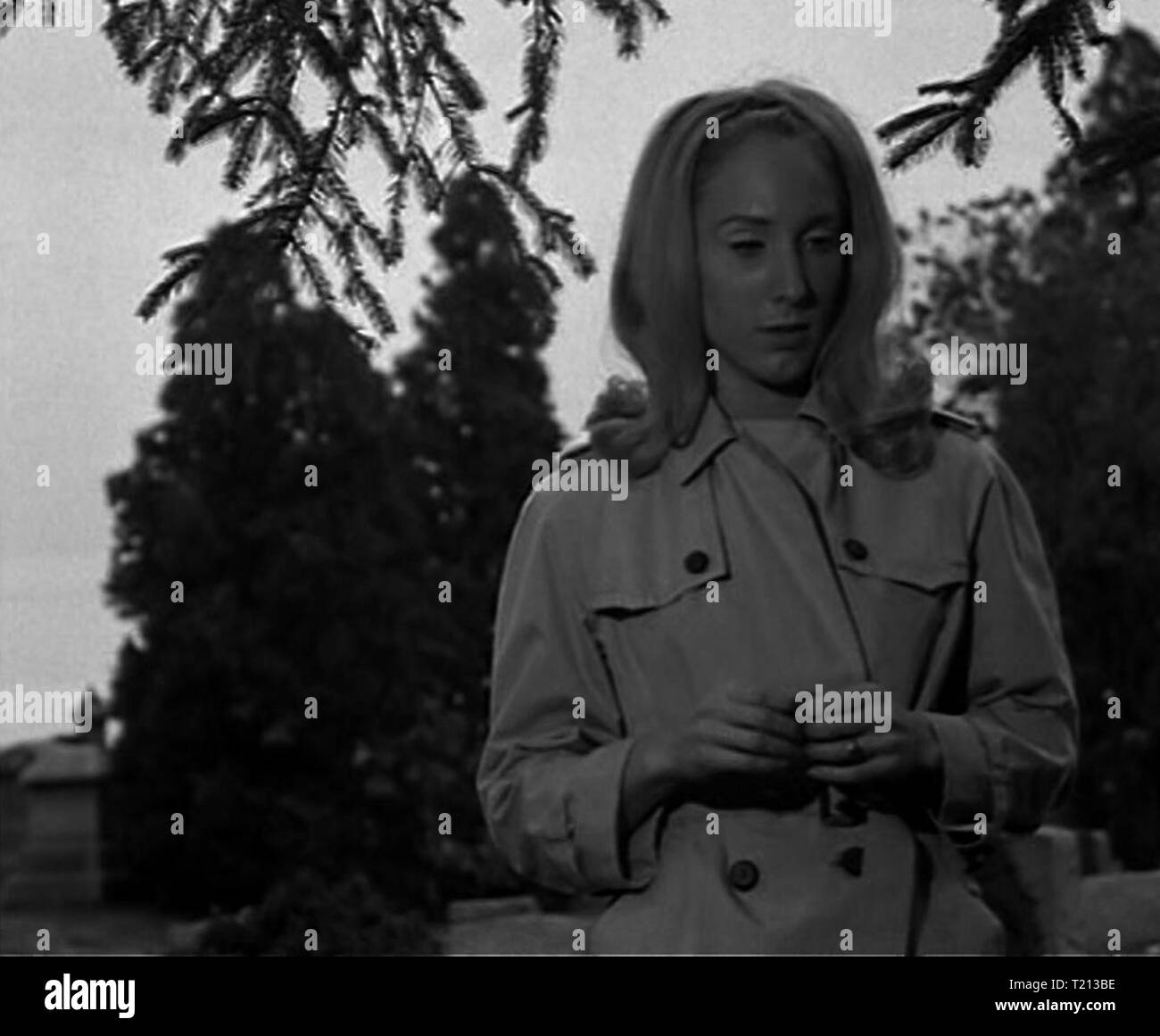 Night of the Living Dead screenshot - Stock Image
