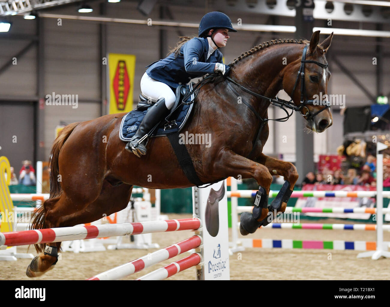 29 March 2019, Thuringia, Erfurt: Lena Gerth takes part with her horse Quickly 28 in the youth jumping competition for style jumping at the fairs 'Reiten-Jagen-Fischen' and 'Forst³'. Around 240 exhibitors from 11 countries will be presenting themselves in the Erfurt exhibition halls until 31 March. The new trade fair 'Forst³' is dedicated to topics from the forestry and timber industry. Photo: Martin Schutt/dpa-Zentralbild/dpa - Stock Image