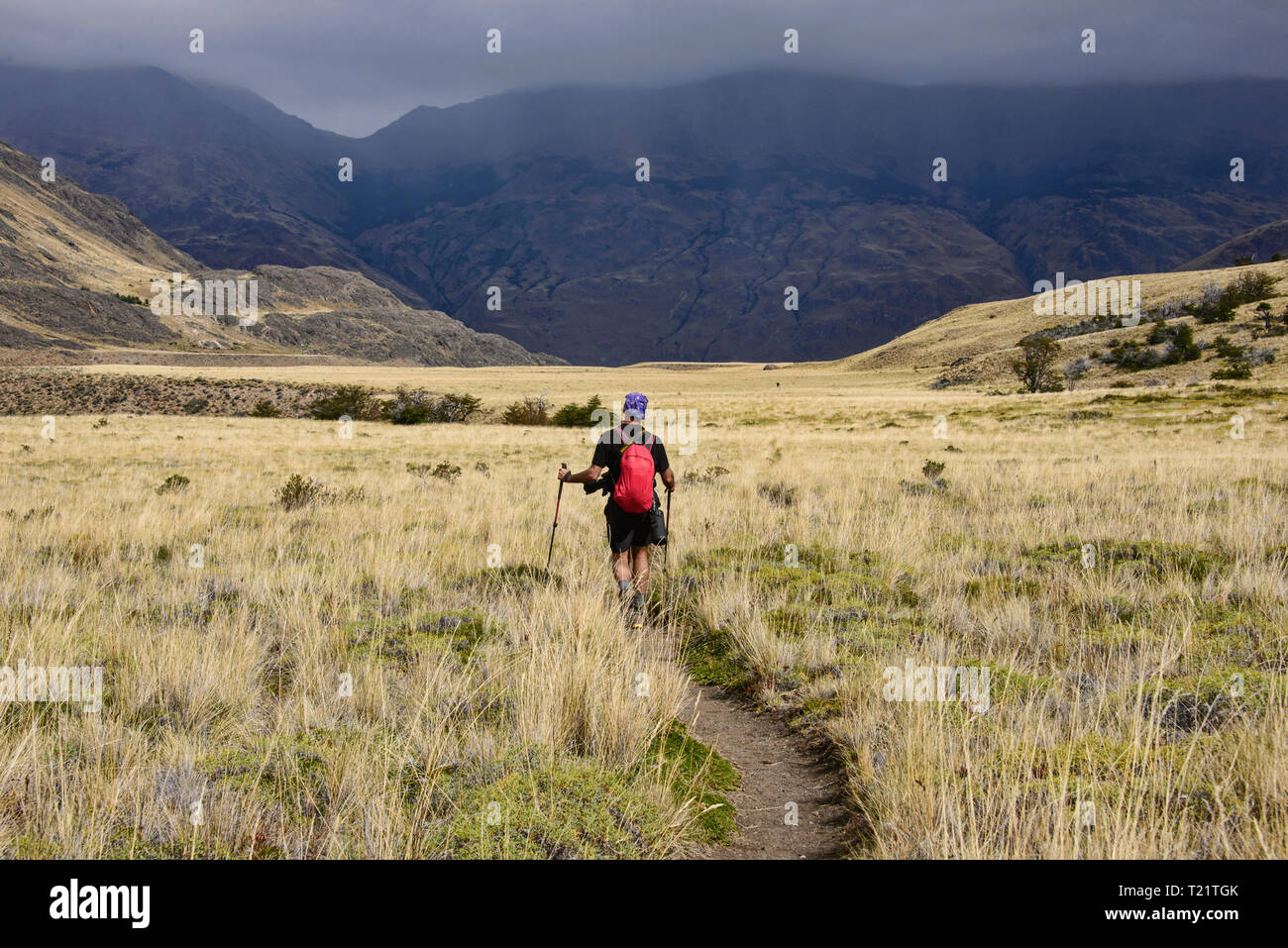 Trekking in beautiful Patagonia National Park, Aysen, Patagonia, Chile - Stock Image