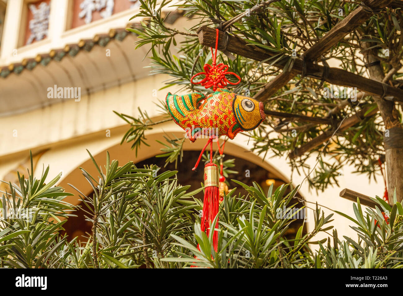 Red and gold carps hanging near Buddhist temple in Old Quarter - decoration for celebrating Tet, Vietnamese new year in Hanoi, Vietnam. - Stock Image