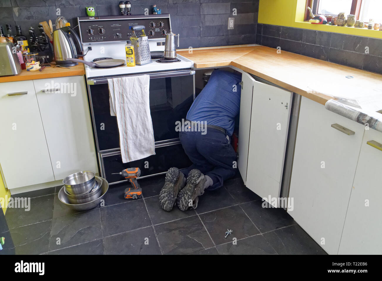 A workman's rear end sticking out of a cupboard as he does work inside it. - Stock Image