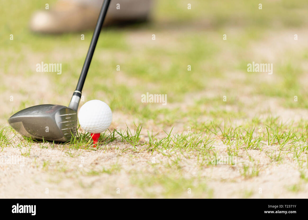 Driver golf club behind a ball on tee. Selective focus, convenient copy space. - Stock Image