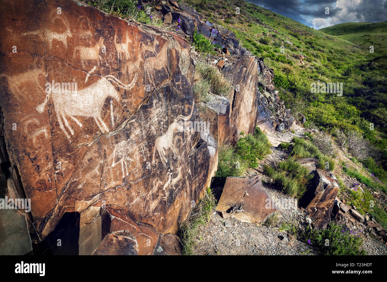 Ancient petroglyph of goats and people on the stone in open air museum Tanbaly at mountains sky background - Stock Image