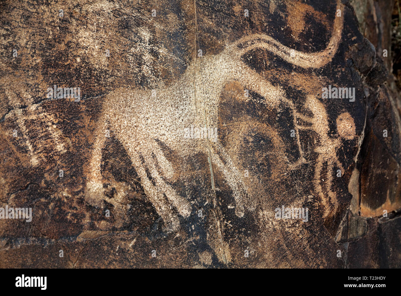 Ancient petroglyph of goats and on the stone in open air museum Tanbaly in Kazakhstan - Stock Image