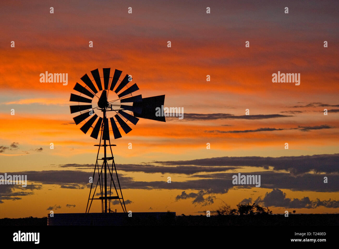 Wind wheel, silhouette at sunset, Valdes Peninsula, Nature Reserve, Patagonia, Argentina Stock Photo