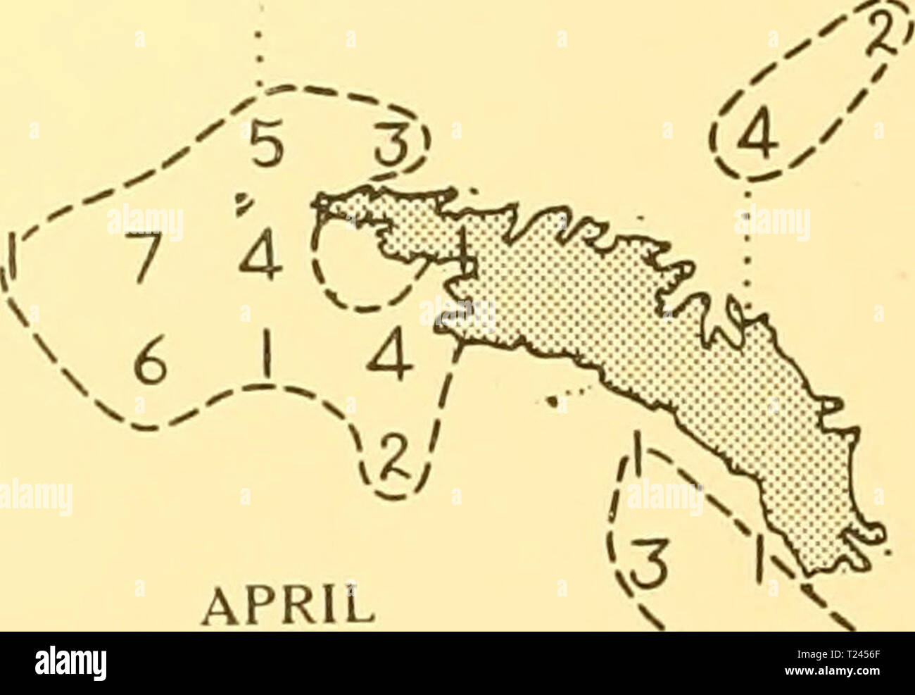 Archive image from page 239 of Discovery reports (1932) Discovery reports  discoveryreports06inst Year: 1932  vr 6 3) d—r''3 3 J' MARCH 39 ® t> (Z l 5 ® '1') (i' FEBRUARY 176  /    APRIL 48 SCALE OF NAUTICAL MILES. 100 '-L_:i. 200 Distribution of Blue whales taken on the South Georgia grounds in season 1923-4 - Stock Image