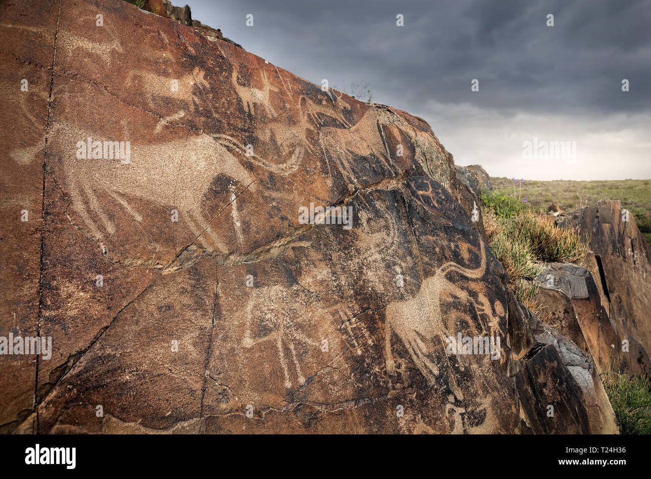 Ancient petroglyph of goats and people on the stone in open air museum Tanbaly at overcast sky background - Stock Image