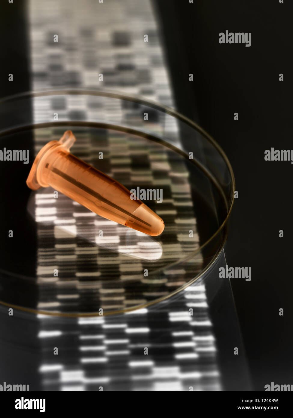Eppendorf vial containing a human sample with the DNA autoradiogram results - Stock Image