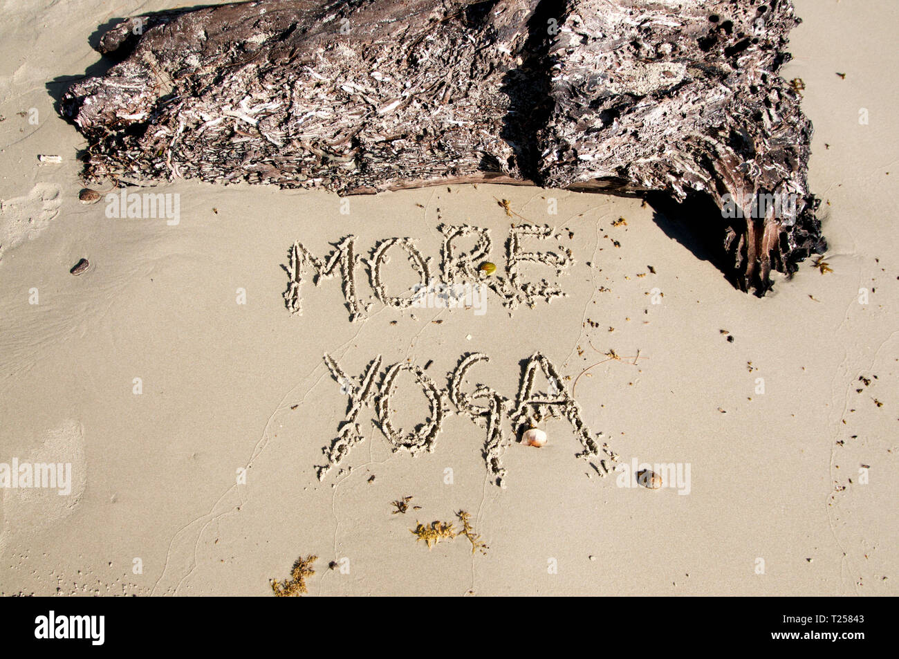 Text 'More Yoga' written in the sand, with a tree trunk above made on Otres Beach, Cambodia - Stock Image