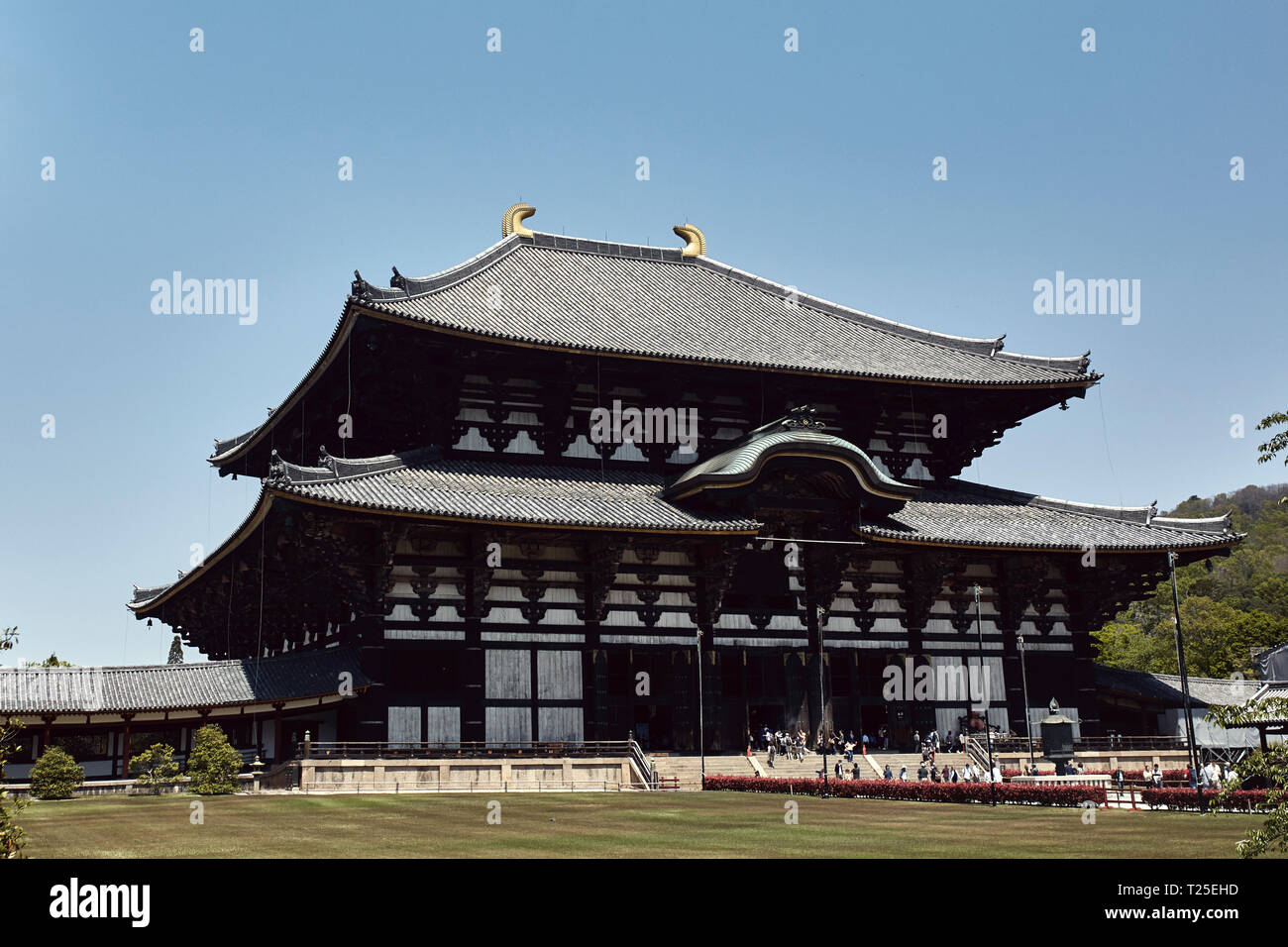 View of Todaiji Temple exterior from a distance in Nara, Japan. - Stock Image