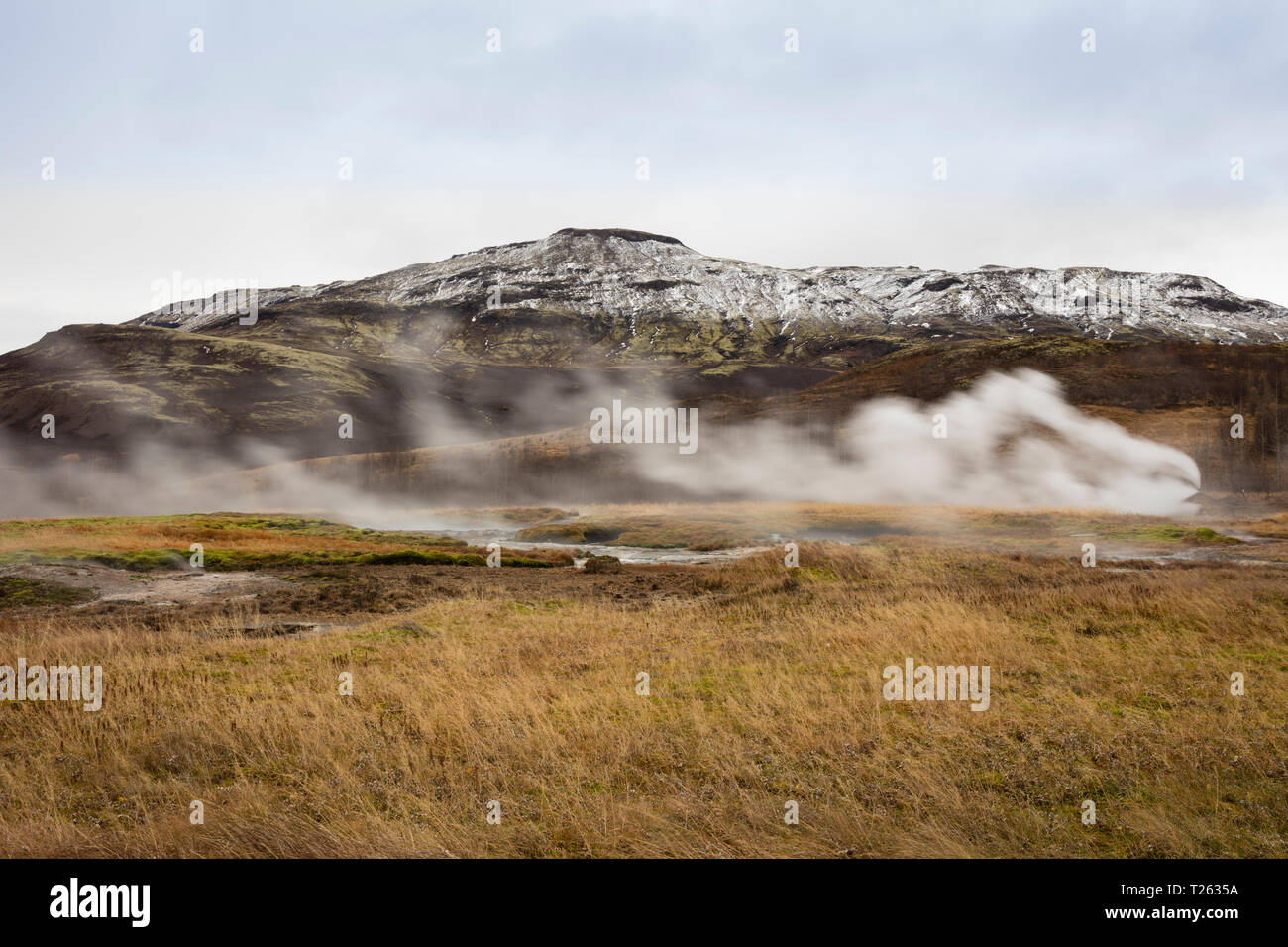 Iceand, Haukadalur valley, Geothermal site with hot spring, geyser Stock Photo