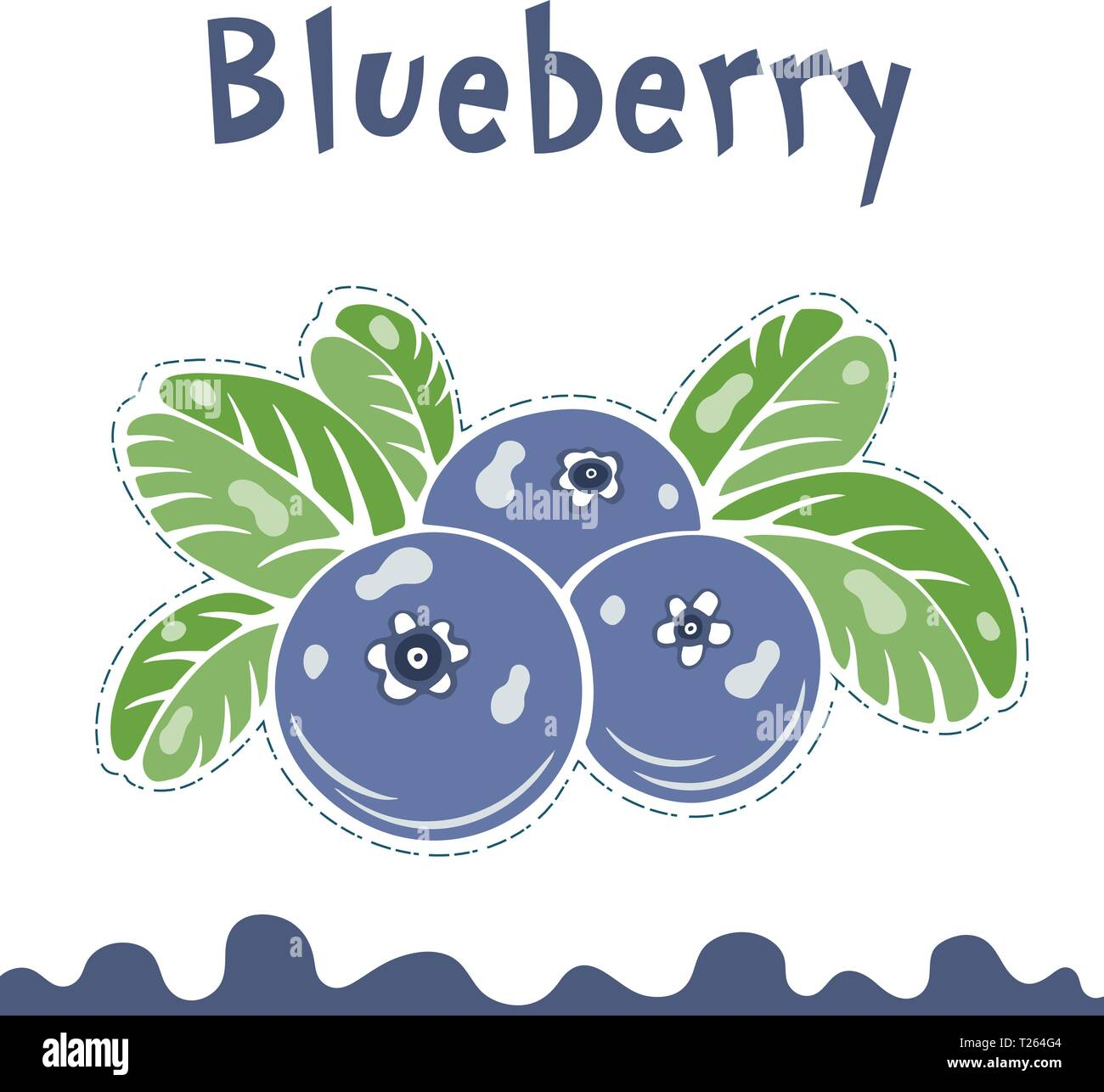 Blueberry vector illustration, berries images. Doodle Blueberry vector illustration in violet blue and green color. Blueberry berries images for menu - Stock Vector