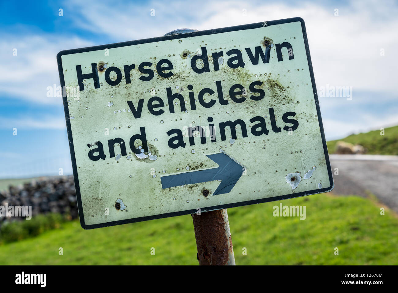 Sign: Horse drawn vehicles and animals - with some sheep in the background, seen near Halton Gill, North Yorkshire, England, UK - Stock Image