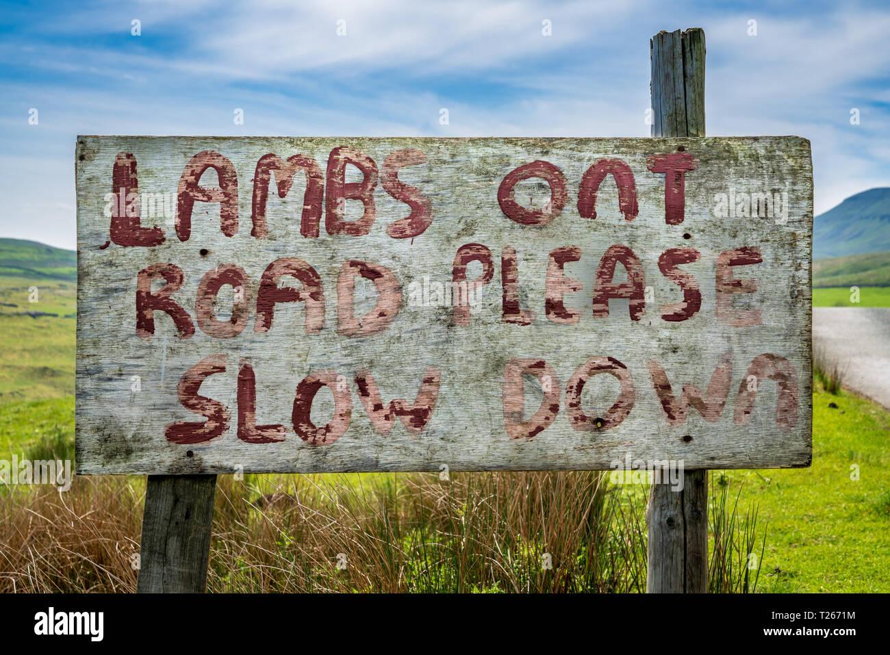 Sign: Lambs on Road please slow down, seen near Halton Gill, North Yorkshire, England, UK - Stock Image