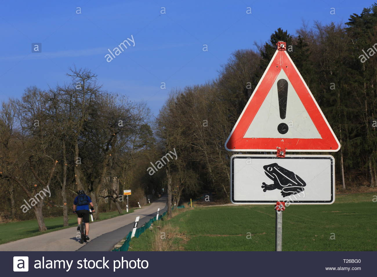 A triangular red sign warns drivers of the hazard of frogs crossing the road in spring - Stock Image