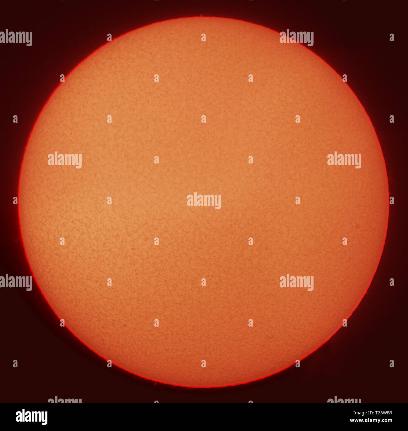 London, UK. 30 March, 2019. Solar filtered view of the sun disk clear of sunspots, solar minimum conditions with 5 consecutive days clear and a total of 58 days so far this year. Credit: Malcolm Park/Alamy Live News Stock Photo