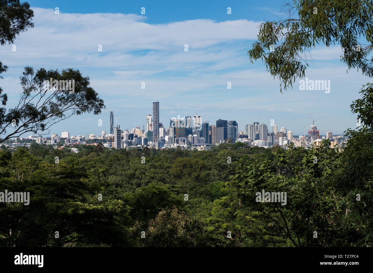 Brisbane Skyline from the forest - Stock Image