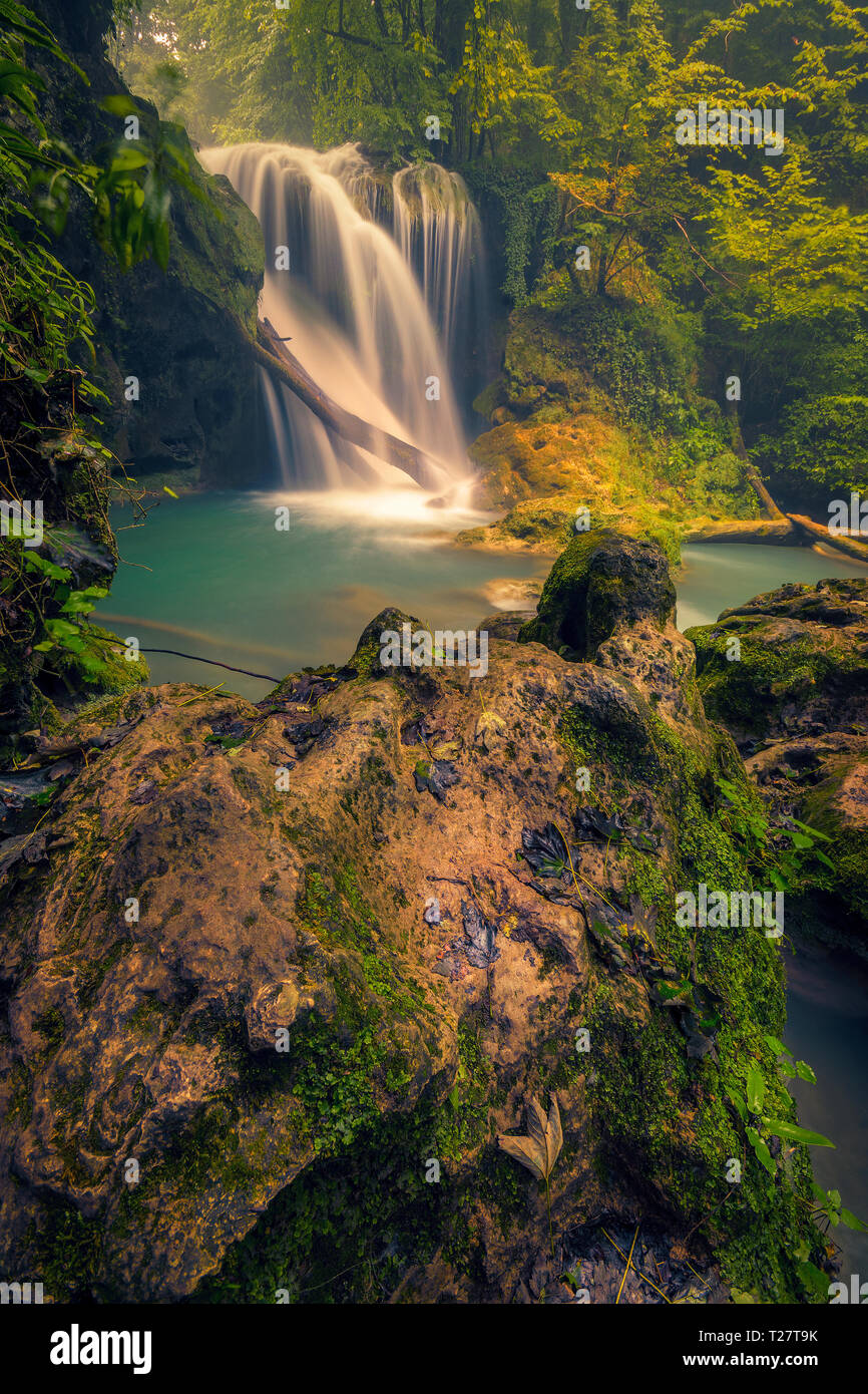 Beautiful waterfall flowing onto a wooden log and a moist rock in the foreground shot in Romania Stock Photo