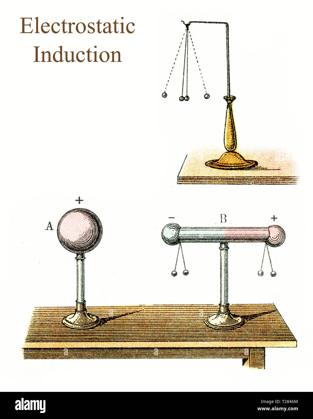 Electrostatic induction is the modification of the distribution of the electric charges on a material in the presence of a charged body: it develops a positive charge on one end and a negative charge on the other. - Stock Image
