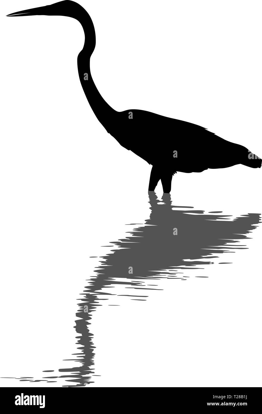 Editable vector silhouette of a great egret standing in deep water with its reflection - Stock Vector