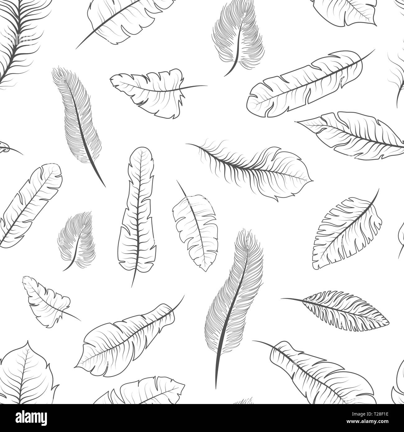 Different black and white exotic feathers, seamless pattern on white - Stock Vector