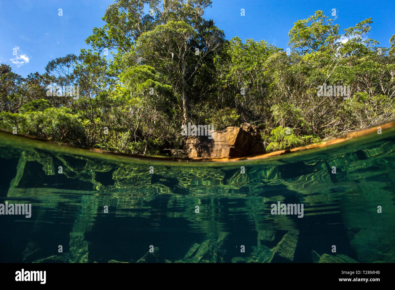 Over-under photo of a crystal-clear river on the Forgotten Coast in the Southern Lagoon Unseco World Heritage Site, New Caledonia. - Stock Image