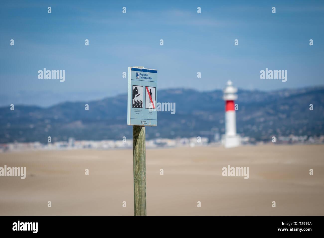 Delta de l'Ebre Natural Park, poster breeding zone in Fangar, Deltebre, Catalonia, Spain Stock Photo