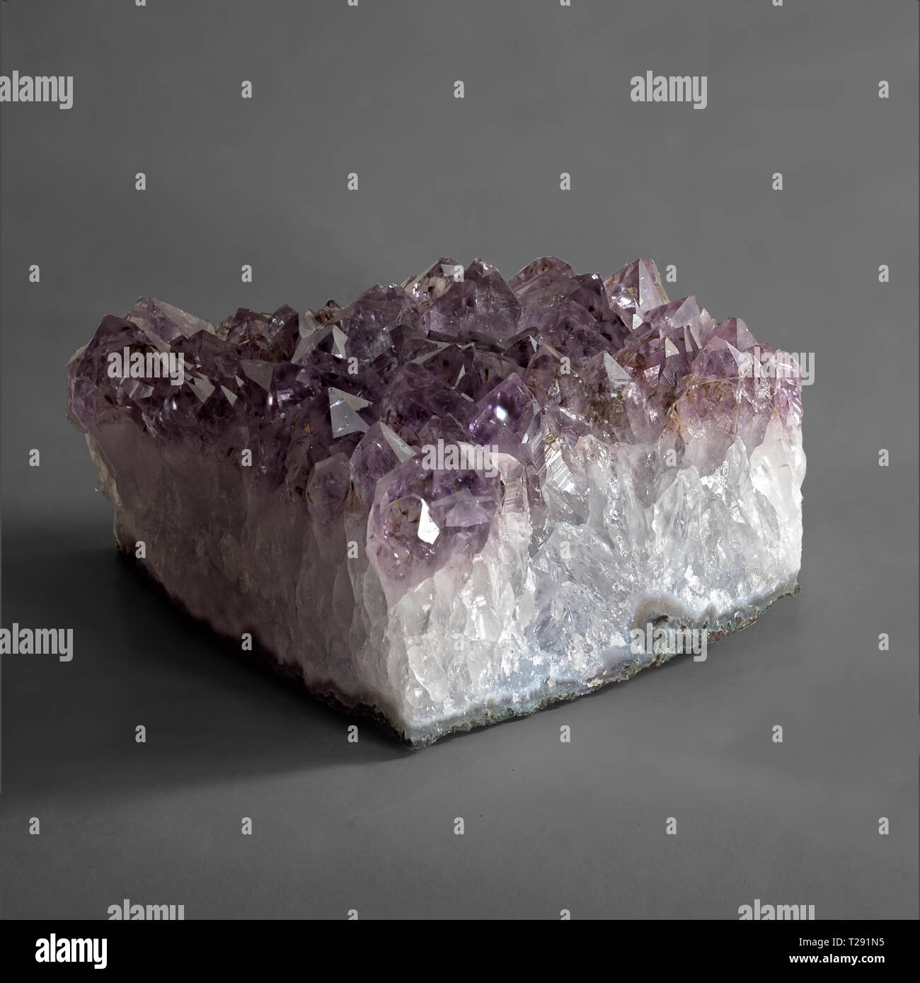 The amethyst druze, shot by focus-stacking method - Stock Image