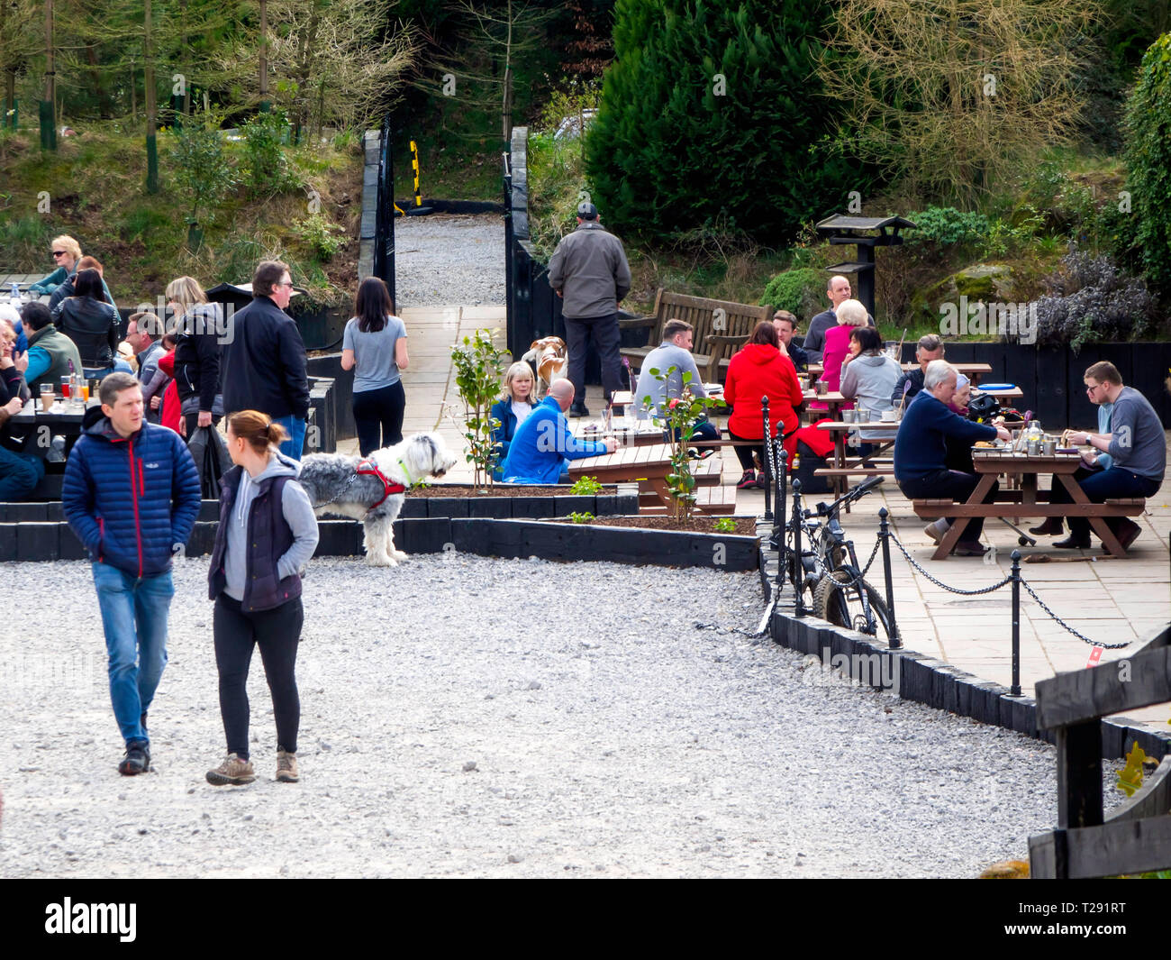 Family groups enjoying spring sunshine at the popular Lord Stones café in the Cleveland Hills North Yorkshire Moors National Park Stock Photo
