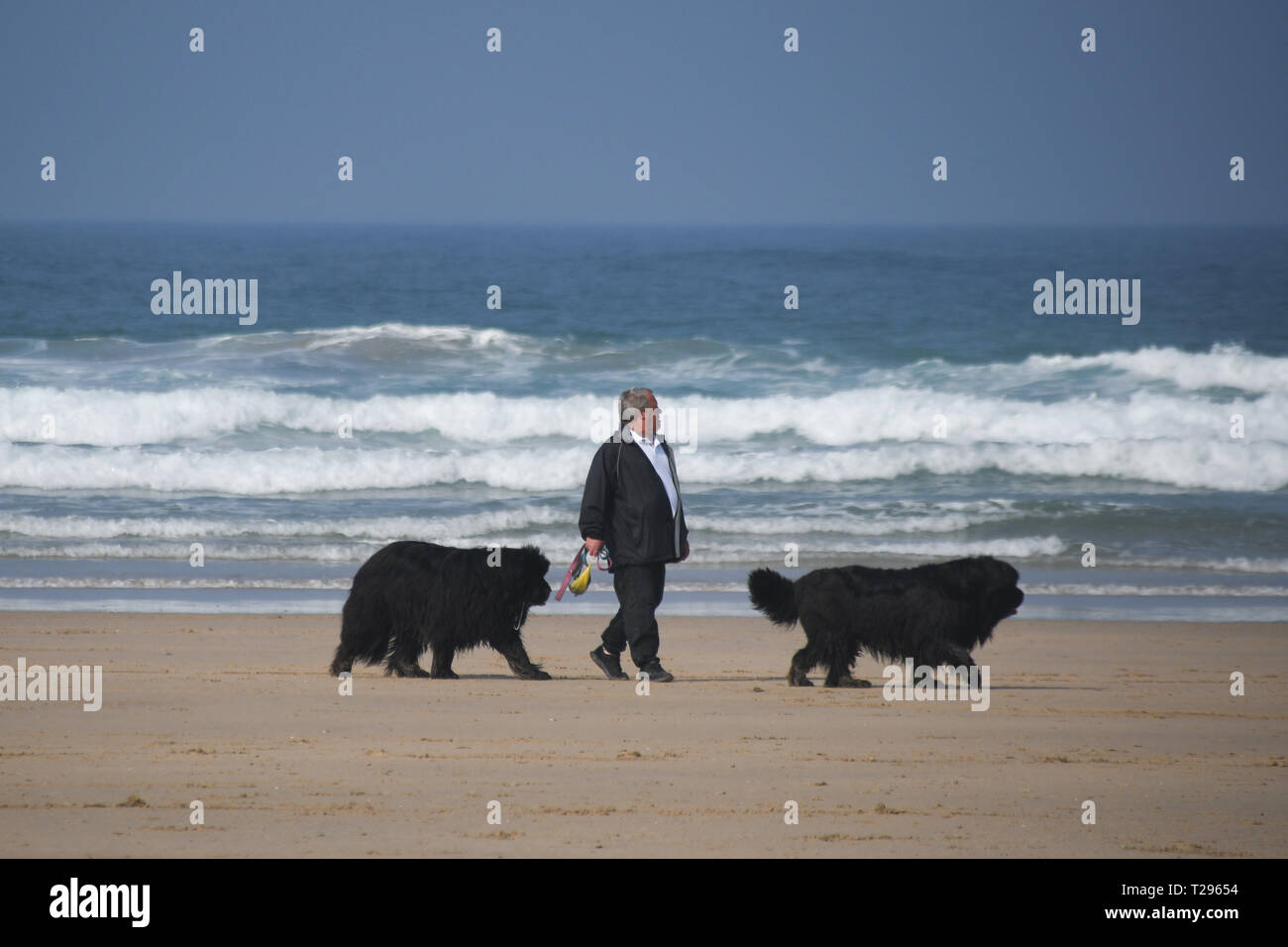 Perranporth, Cornwall,UK. 31st March 2019. UK Weather. It was hot and sunny for the first day of British Summertime on the beach at Perranporth, with horse riders, dog walkers and families out making the most of the hot weather on mothers day. Credit: Simon Maycock/Alamy Live News Stock Photo