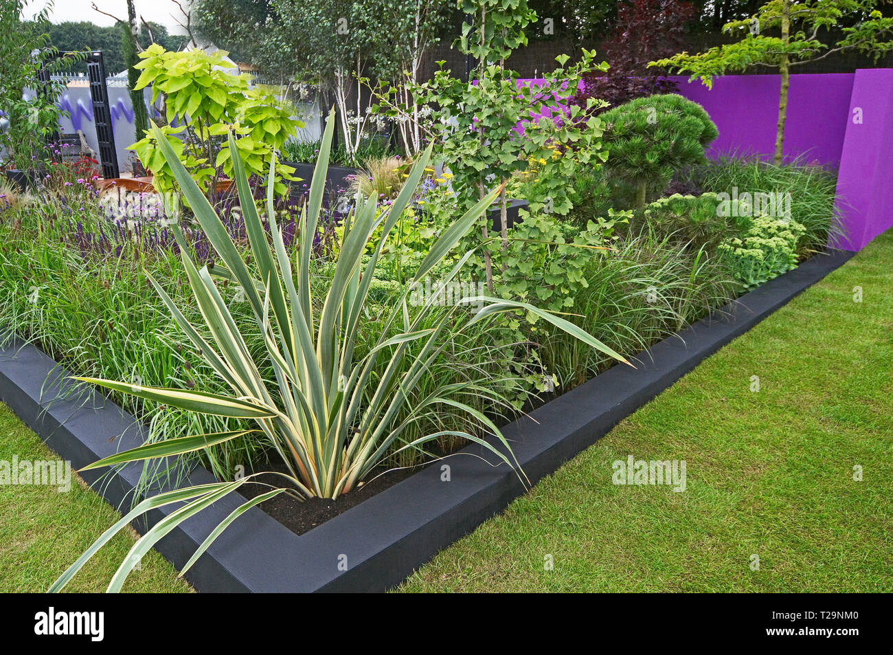 A modern garden with colourful mixed planting of flowers, grasses, cactus, plants and shrubs Stock Photo