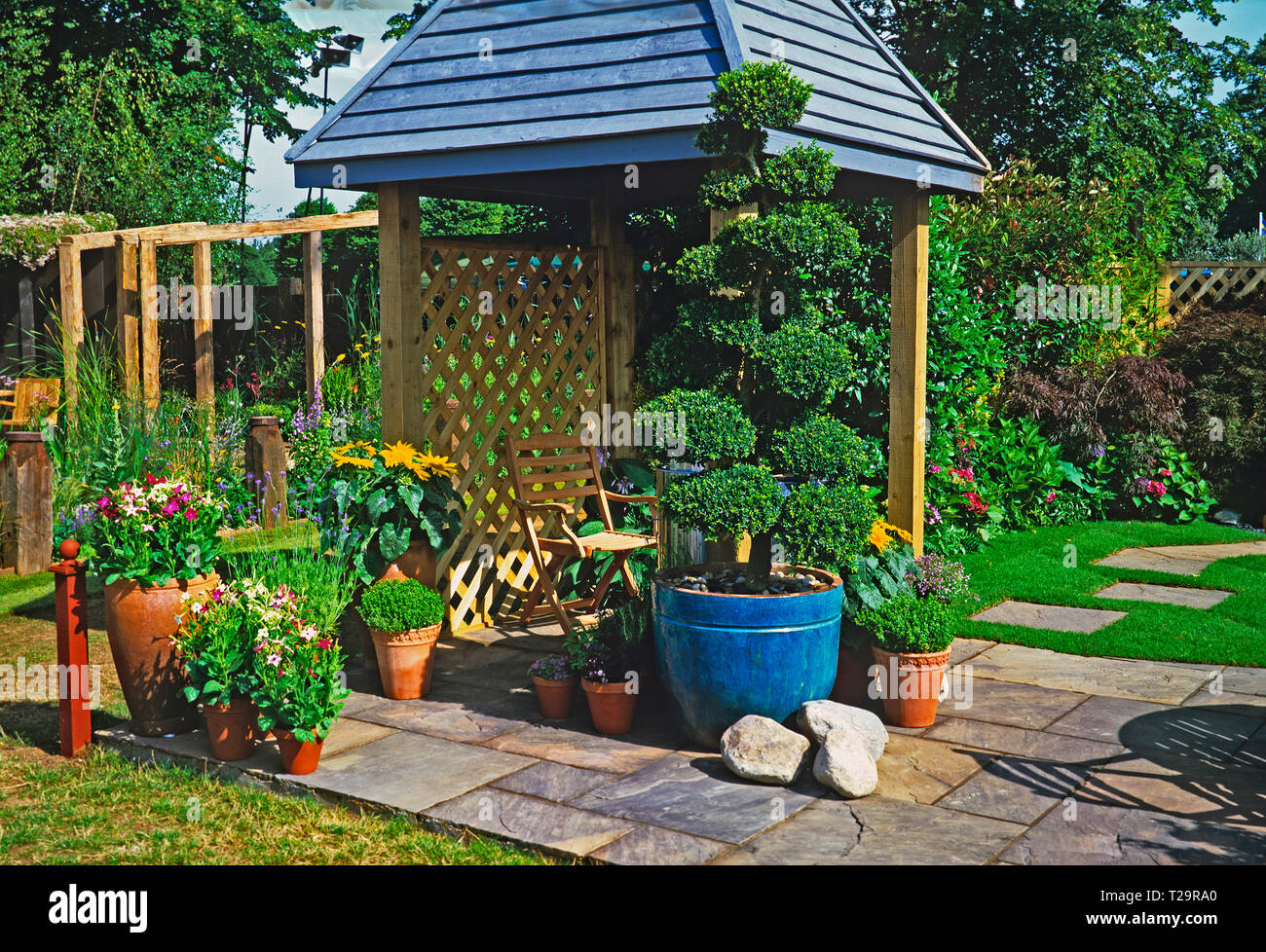 A colourful urban garden with planted containers of flowers and a cloud pruned topiary tree with covered seating area Stock Photo