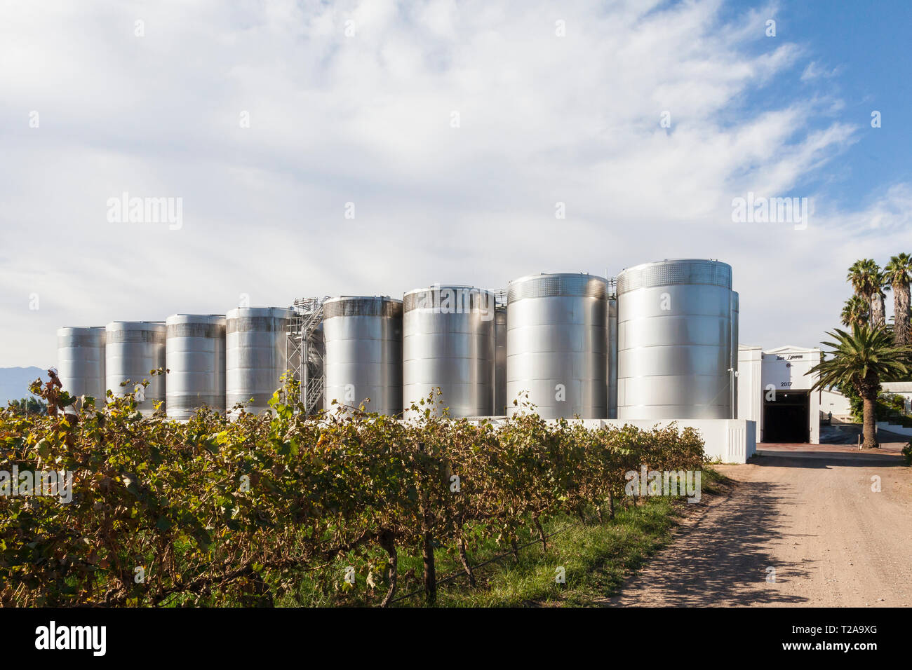Fermentation tanks and vineyards  on Van Loveren Wine Estate, Robertson Wine Valley, Western Cape Winelands, Route 62, South Africa - Stock Image