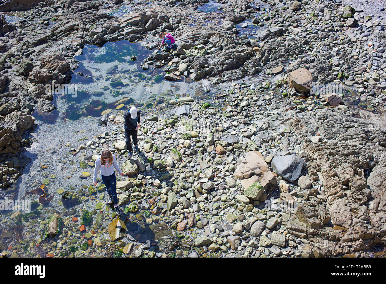 Birds eye view of three kids walking along rock pools Stock Photo