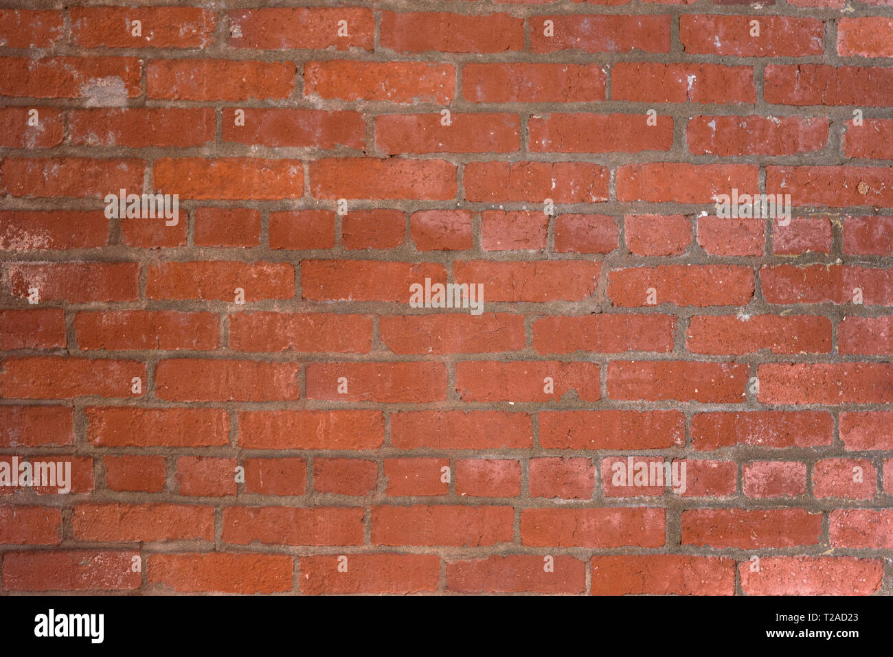 Reddish orange brick wall background showing some details in bricks. - Stock Image