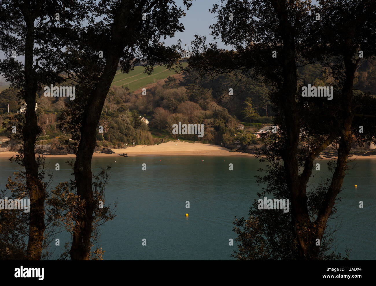 A shot of Smalls Cove on East Portlemouth through trees in Salcombe. - Stock Image