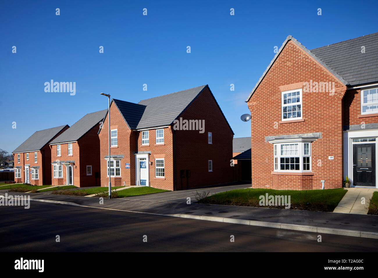 DAVID WILSON HOMES new build houses at  Black Firs Park, Congleton in Cheshire - Stock Image