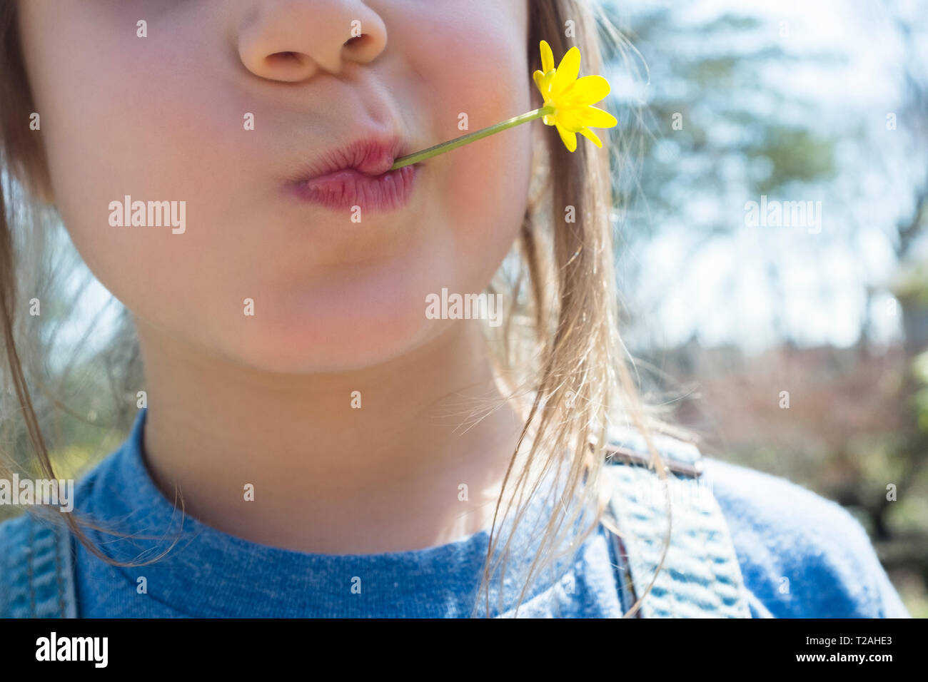 Girl with yellow flower in mouth Stock Photo