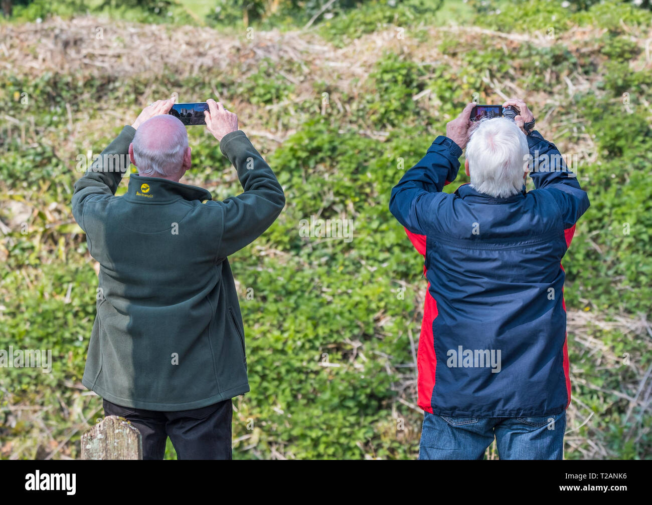 Pair of foreign tourists holding up smartphone cameras taking photos of a landmark in England, UK. Taken from behind. - Stock Image
