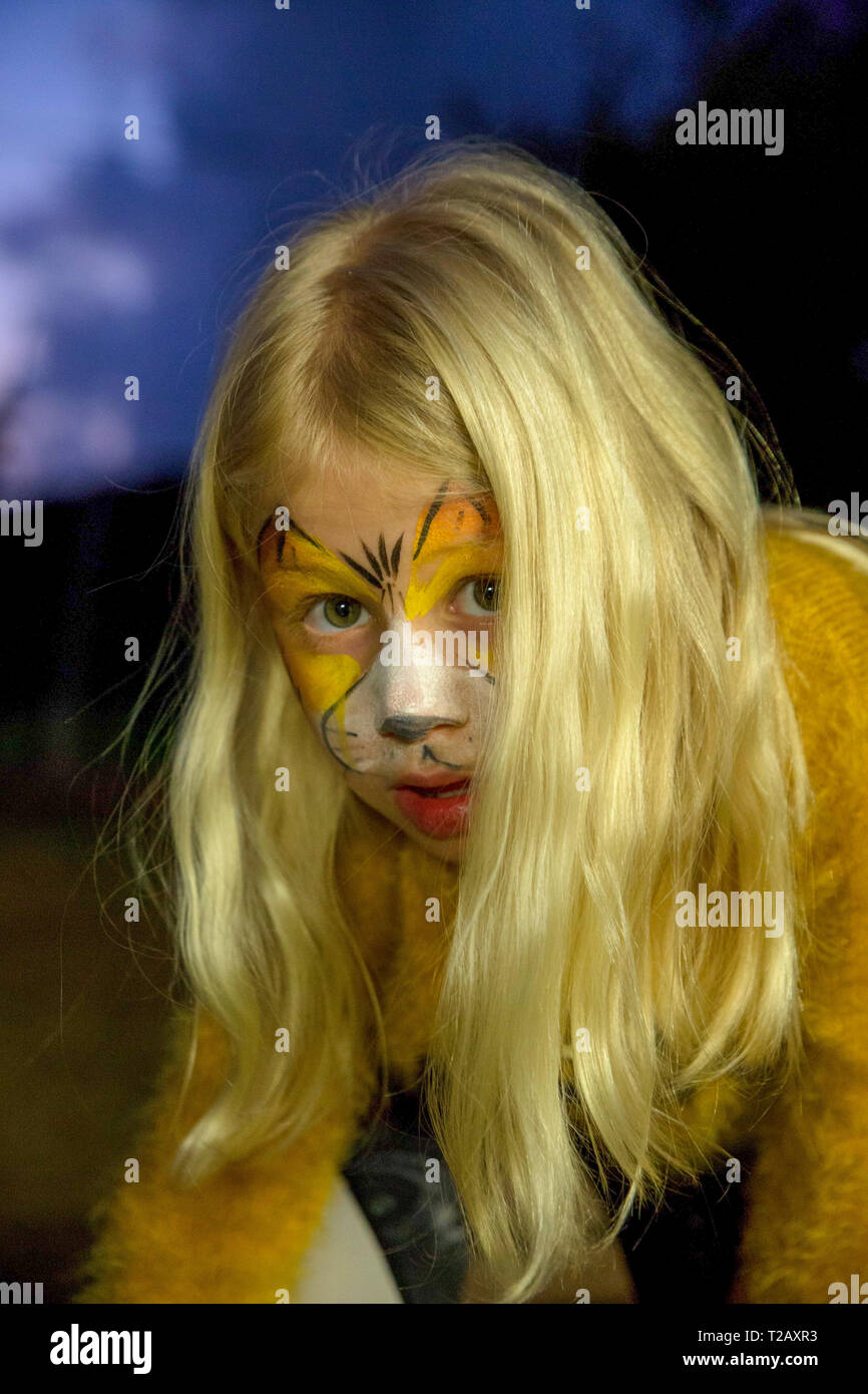 Young girl with tiger makeup mask is getting ready for Purim. model released - Stock Image